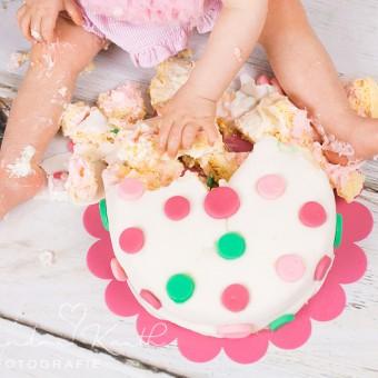Smash the Cake, Charlie! Tortenshooting zum 1. Geburtstag