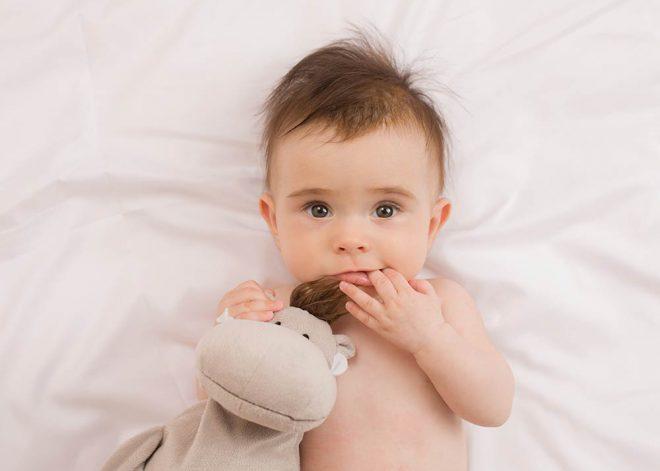 Babyfotos Berlin: kleines Mädchen hält ein Stoffnilpferd im Arm