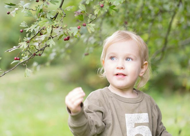 Kinderfotos Berlin: Mädchen pflückt im Park rote Beeren von einem Strauch
